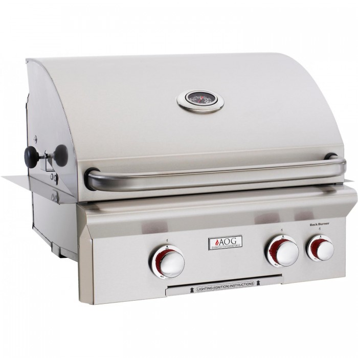 American Outdoor Grill T-Series 24-Inch Built-In Natural Gas Grill